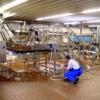 смазка в пищевой промышленности